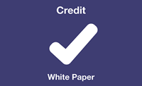 Credit white paper icon